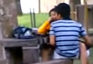 Indian College Students Fucking all round public park Voyeur Recorded by people